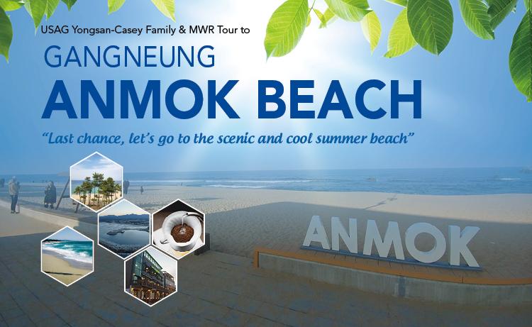 Tour to Gangneung Anmok Beach
